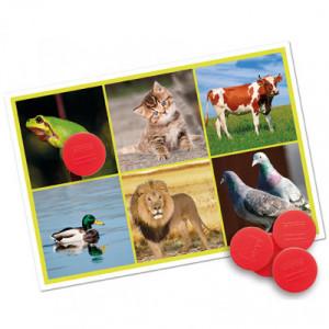 Bingo: los animales y la...