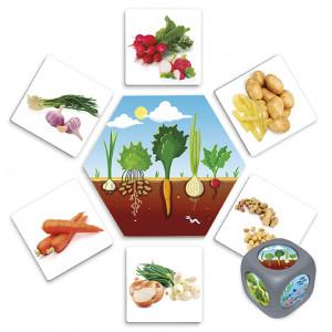 De dónde vienen los alimentos?