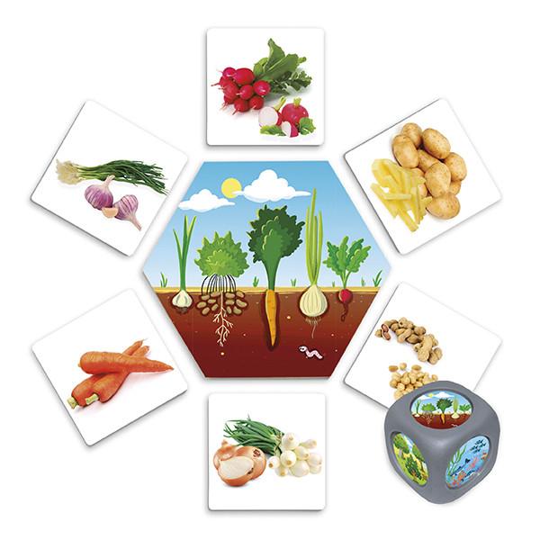 ¿De dónde vienen los alimentos?