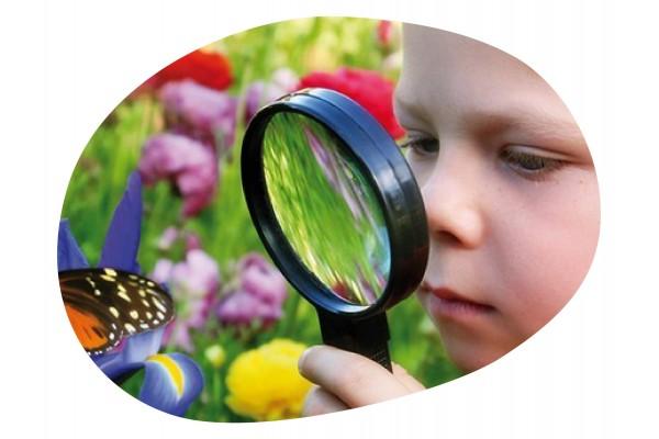 ▷ JUEGOS de Atención y Concentración para Niños