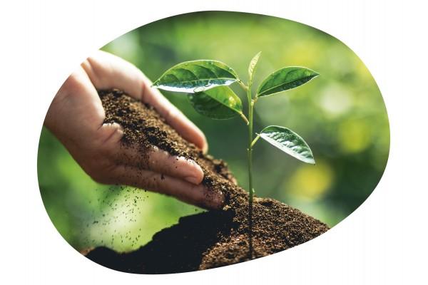 ▷ JUEGOS para Niños sobre la Naturaleza y el Medio Ambiente